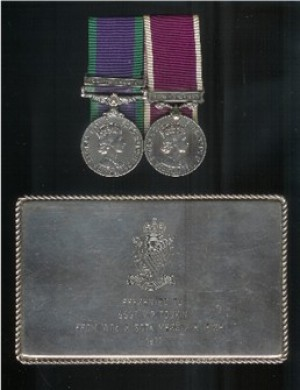 PAIR.  Capt. V.P. Tonkin, Royal Electrical and Mechanical Engineers  (served 29 years, Craftsman to Captain).